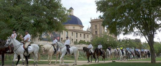 Caballos ante el museo San Pío. Encuentro Ecuestre Ciudad de Valencia Valencia_02