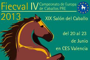Fiecval 2013