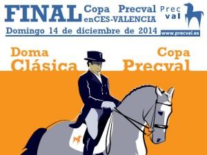 final-copa-precval-2014