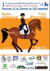 cartel-copa-precval.2015-300
